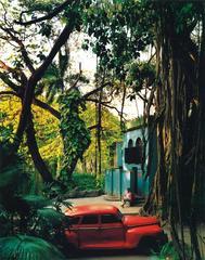 Rosa en Tropical, from the series Cuba
