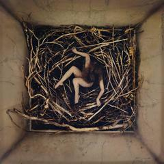 Remain, Nest