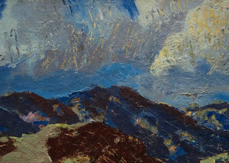 The Storm (Colorado) For Sale 4