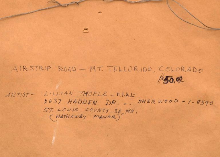 Airstrip Road - Mt. Telluride, Colorado 6
