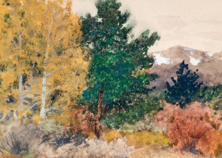 Untitled (Trees in Autumn, Colorado) 3