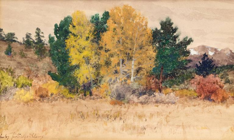 Untitled (Trees in Autumn, Colorado) 2