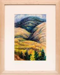 Aspen - Santa Fe Mountains