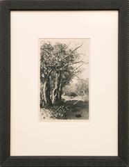 Untitled (Creek and Trees)