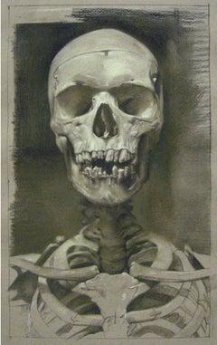 ANATOMY STUDY IN SEPIA, portrait of human skeleton, bones, damaged teeth
