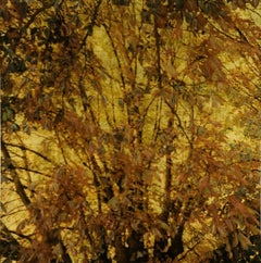 NO. 165, depiction of trees, nature, gold, brown, branches of tree, leaves