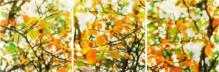 Brandy Creek III - Painting by Susan Goldsmith
