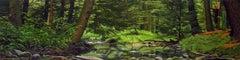 WISSAHICKON, photo-realism, woods, green, nature, landscape, panorama
