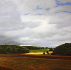 FLEMISH FIELDS, landscape, farms, cloudy sky, hyper-realism, country