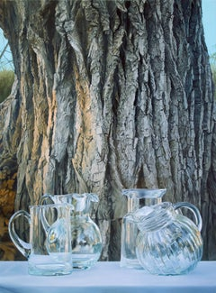 THE LAST TREE, glass on white-clothed table, photo-realism, bark, tree