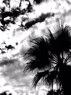 "#inthesky Series"" Palm Springs #10"