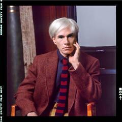 Andy Warhol (Modeling Portrait)