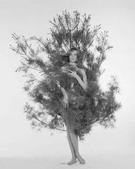 Nena in Fir Tree, Nena von Schlebrugge, ca. 1959