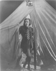 Greta Garbo, Wild Orchids