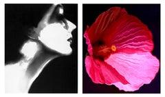 Lisa Fonssagrives, Harper's Bazaar and Flower 28 (Pink Mallow)