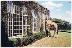 Rubber Necking, Kenya, Vogue