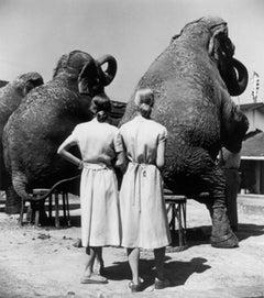 Twins with Elephants, Sarasota