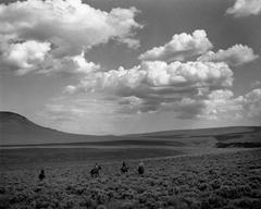 Whitehorse Ranch, Fields, Oregon, 1984