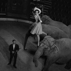 Elephant Dance, Paris