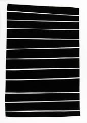 Twelve Lines : Black and White Series