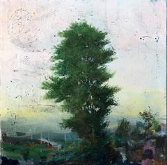 Landscape with Peach Sky