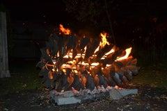 Fire Cone - Pine Cone