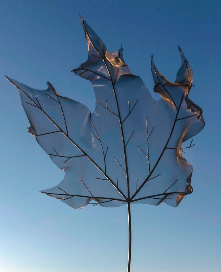 Sacrifice - Wind Swept Maple Leaf - Blue Still-Life Sculpture by Floyd Elzinga