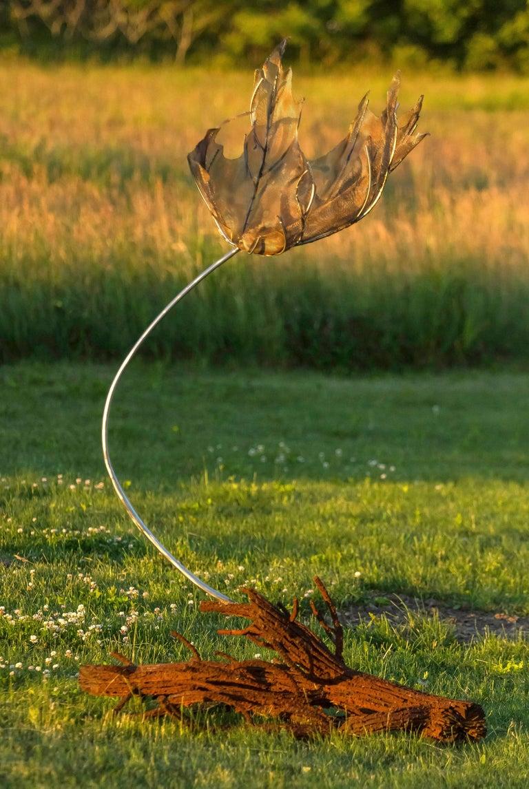 Sacrifice - Wind Swept Maple Leaf 5