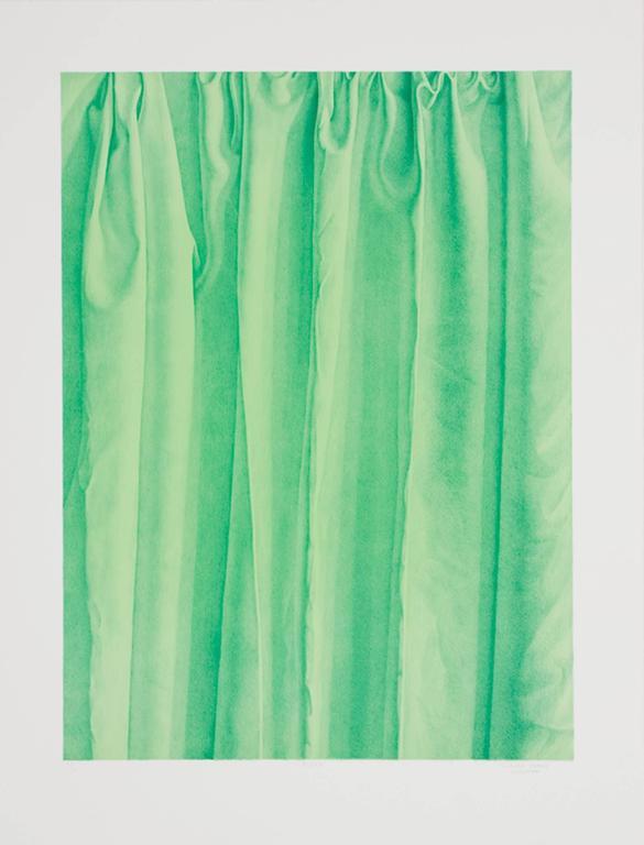 Claudio Bravo Interior Print - Flora (Green)