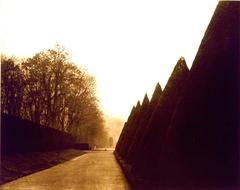 Path at Sceaux