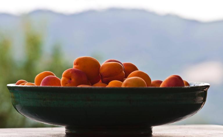 """""""Apricots"""" Photograph, Mendocino, CA"""