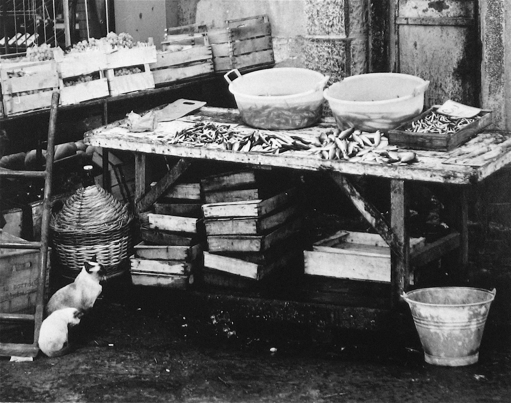 Roz joseph portuguese market scene black and white photograph 1960s
