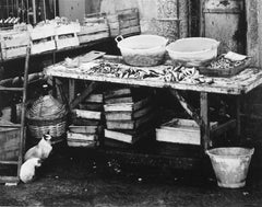 Portuguese Market Scene with Siamese Cats , Black and White Photograph, 1960s