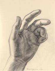 Study of a Hand in Graphite
