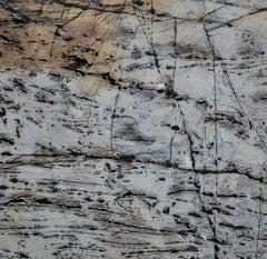 """Texture 3: Granite"" Coastal Maine, Framed Photograph"