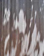 """Safekeeping (En lieu sur)"", Mendocino, CA Photograph"