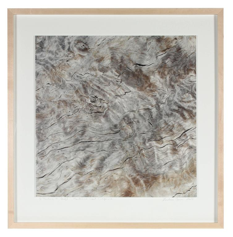 """Texture 9: Drift"" Mendocino Coast Photograph"