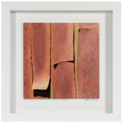 """Texture 7: Madrone Bark"" Mendocino, CA Photograph"