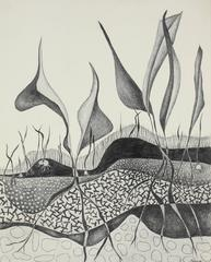Abstracted Plants in Graphite, Monochromatic Drawing, Circa 1975