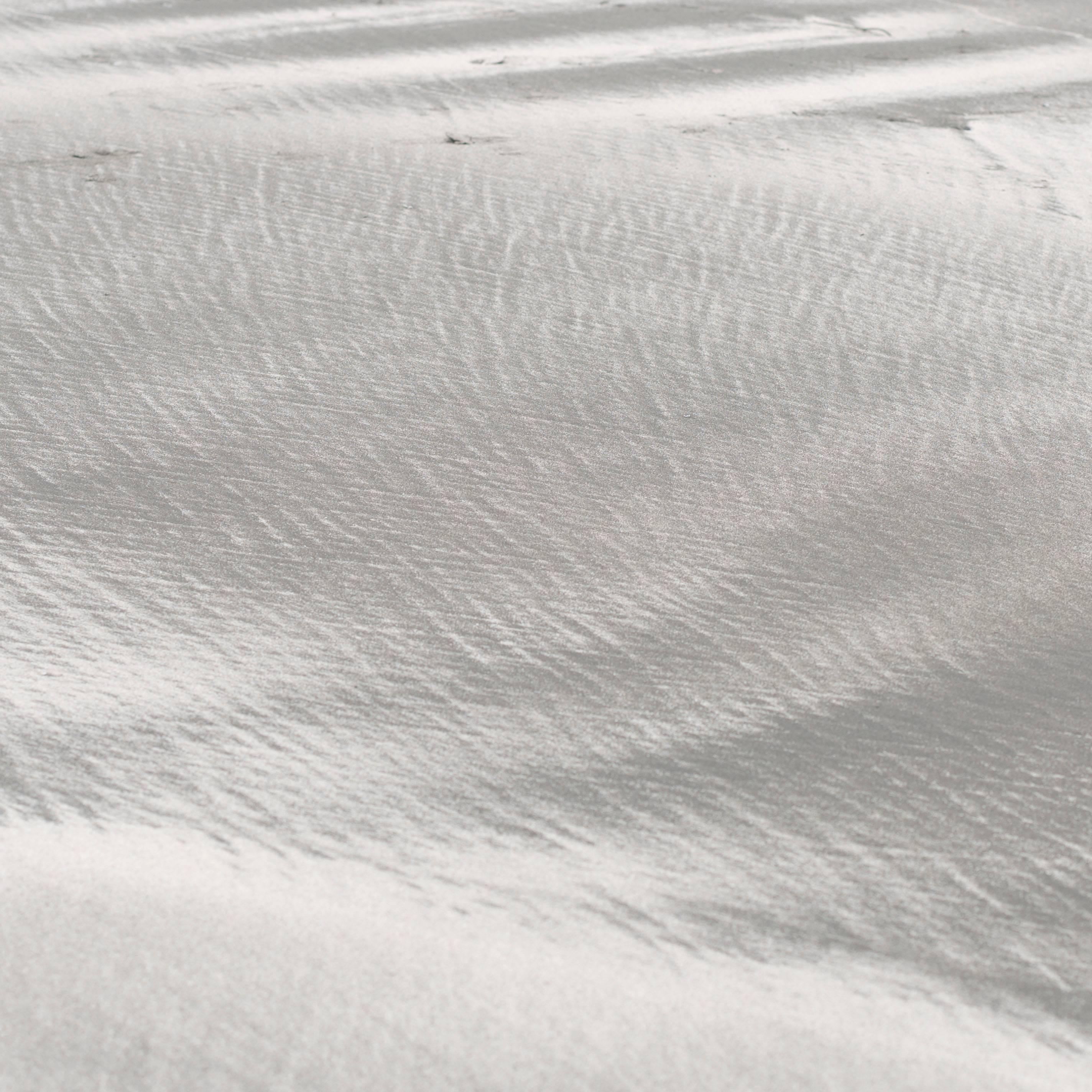 """Texture 10: Shell Dust"", Mendocino, CA Photograph, 2015"