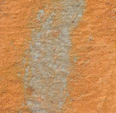 """Texture 2: Ochre"" Coastal Maine Photograph, 2013"