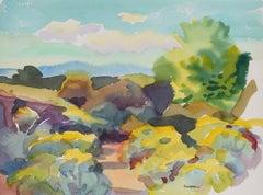 """Santa Fe - Alice's Wash"" New Mexico Watercolor Landscape, 1992"