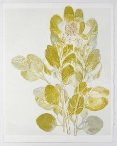 """Yellow Eucalyptus"", Monotype, 2012"