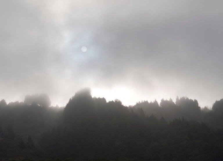 """Early Morning Sun & Fog"", Northern California Coast. (Framed) Photograph."