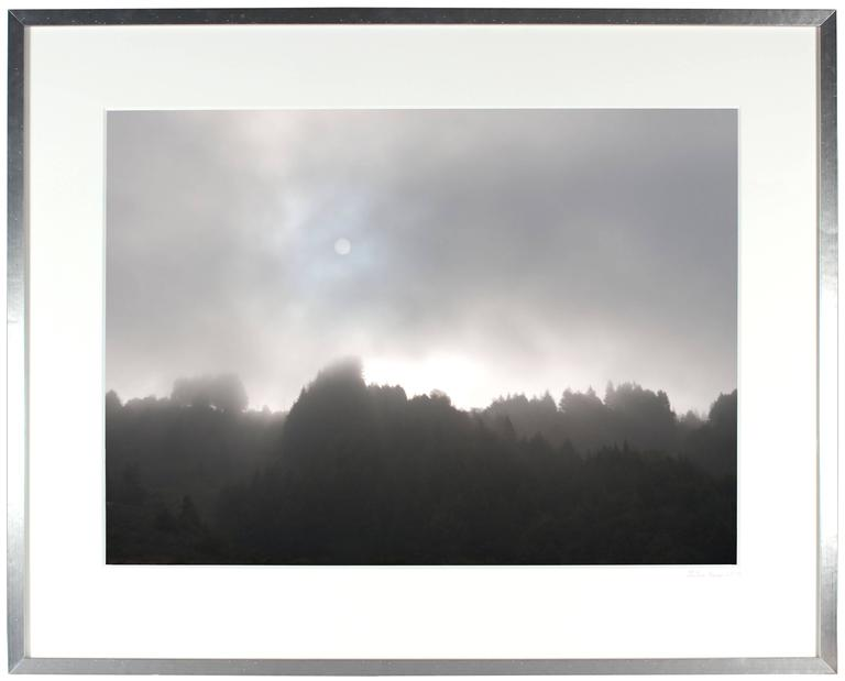 """Early Morning Sun & Fog"" Mendocino, CA 2"