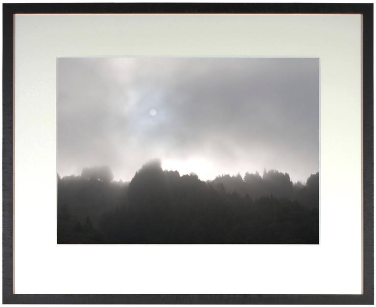 """Early Morning Sun & Fog"" Mendocino, CA 4"
