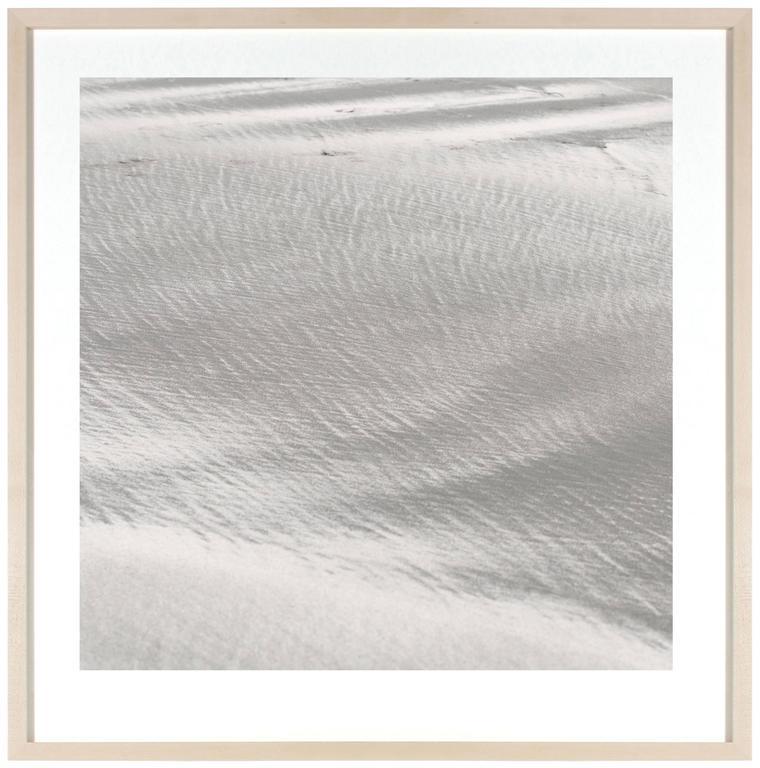 """Texture 10: Shell Dust"", Mendocino, CA 2"