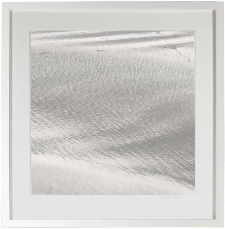 """Texture 10: Shell Dust"", Mendocino, CA 3"