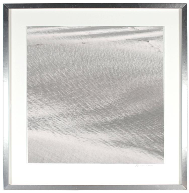 """Texture 10: Shell Dust"", Mendocino, CA 4"