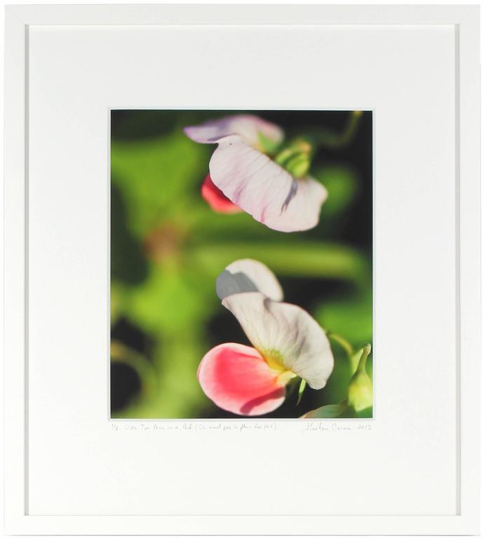 """""""Like Two Peas in a Pod (Ce n'est pas la fleur des pois)"""", Mendocino California - Photograph by Gaétan Caron"""